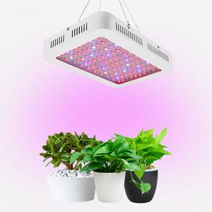 Sulla vendita di Alta lumen led coltiva la luce 1000w per la coltivazione di ortaggi