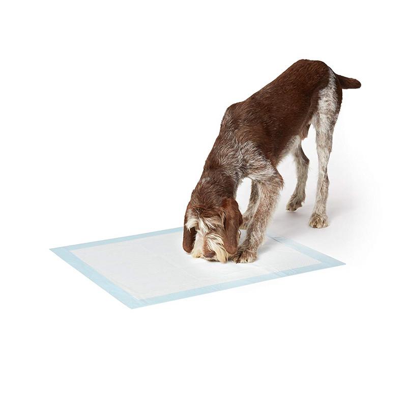 Amazon basics cachorro perro gato mascotas baño casa de formación pee wee esteras almohadillas para perros