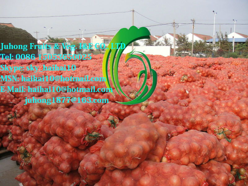 Big Delicious Red Onions