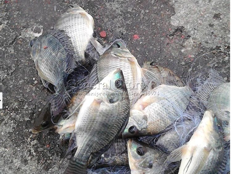 пружина с сеткой для рыбалки