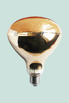 Roasted Red Infrared Heat Lamp For Food Bathroom Ceiling Heat Lamp R40 R125 Heating Bulb