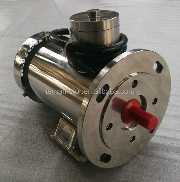 IEC Stainless Steel Electric Motor