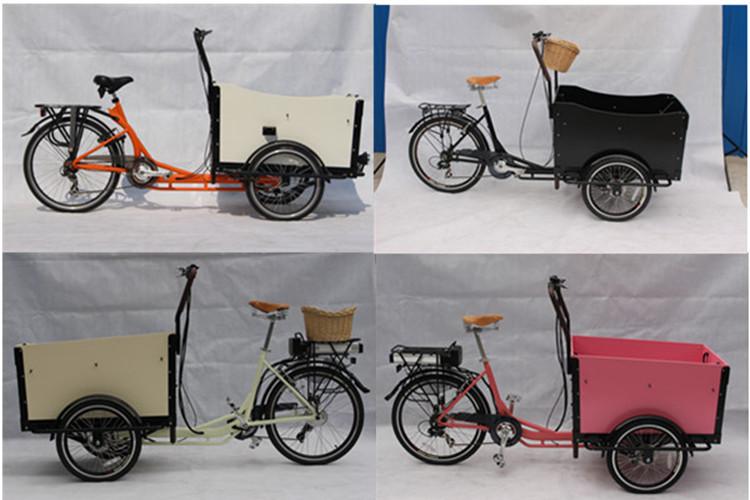 mini cargo van three wheelers