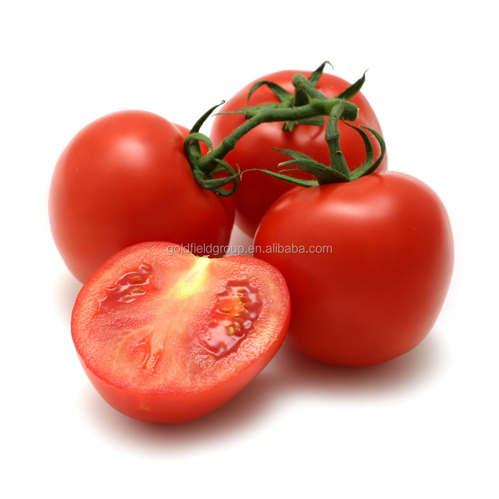 Lycopene extract softgels