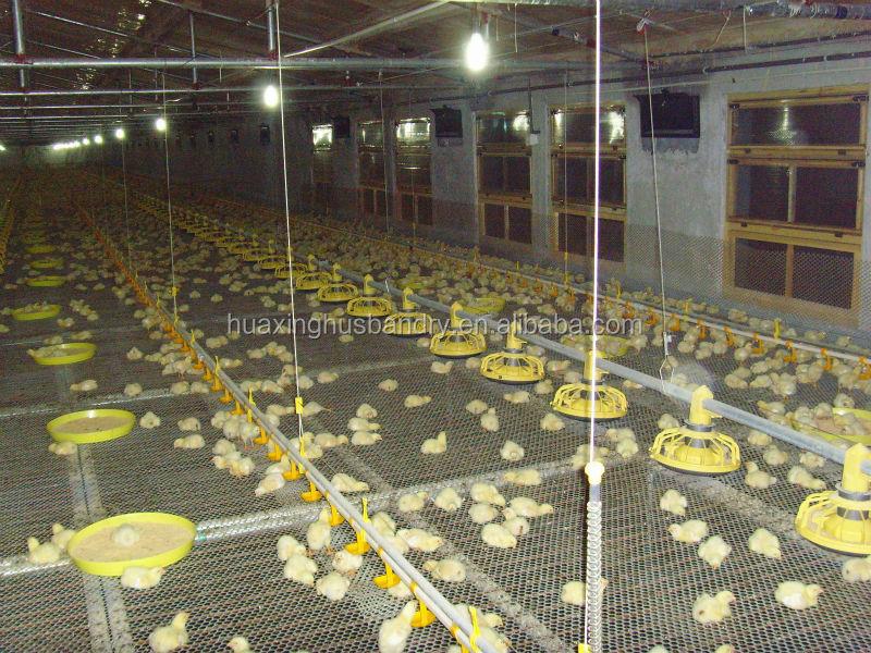 Poultry Farm Construction : Chicken house farm construction building broiler poultry