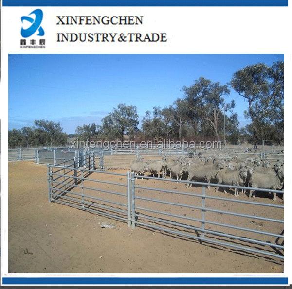 Permanent-Sheep-Yard-1.jpg