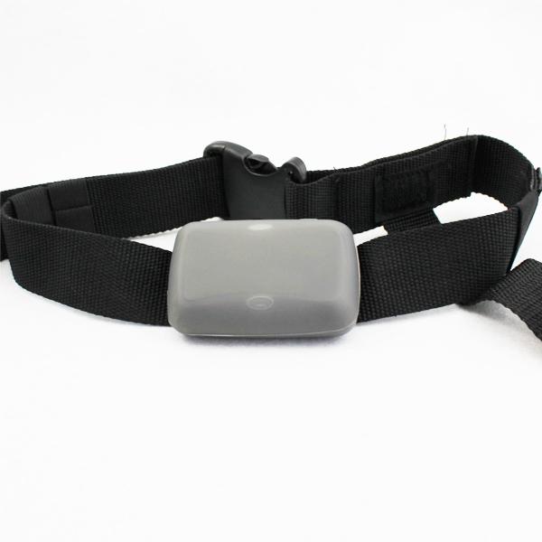 2014 새로운 제품 가장 인기있는 고양이 칼라 GPS