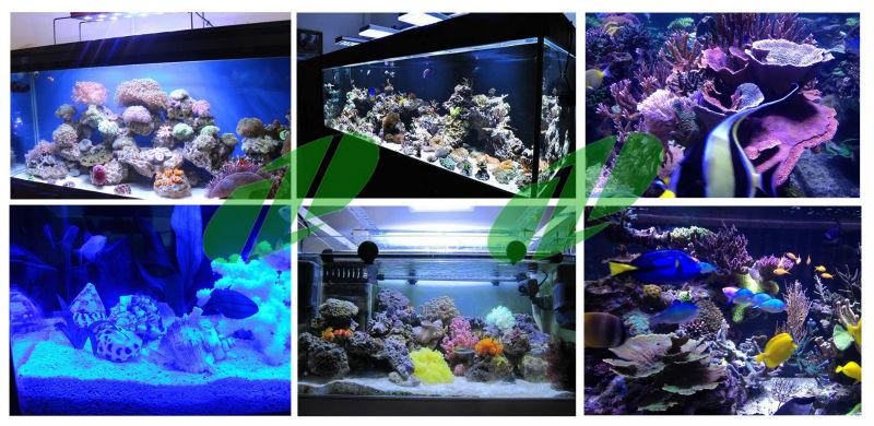 Hot sale planet Programmable led reef aquarium light