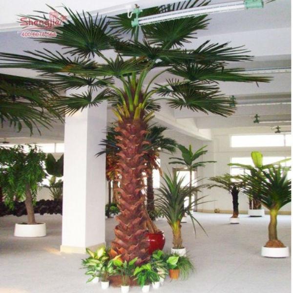 toutes sortes de palmiers ext rieur de palmiers artificiels id de produit 500002310971 french. Black Bedroom Furniture Sets. Home Design Ideas