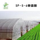 Sp-s-6 túnel poli estufa