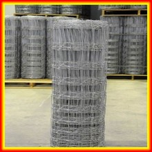 hot sales !!! hot dipped galvanized or electric galvanized animal breed grassland fence/wire mesh fence