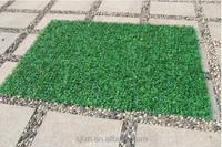 Decor evergreen Milan artificial grass ,indoor artificial grass
