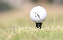 New design golf tee marker holder plastic golf ball holder