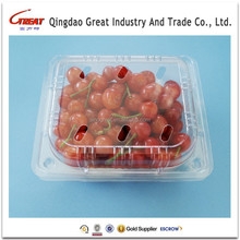 Plastic Strawberry Box Cherries Packaging Box Disposable Transparent Container