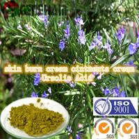 skin burn cream ointments cream ingredient Ursolic Acid China Supplier