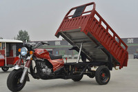 Motorized Cargo Tricycle/Heavy Load