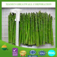 Frozen green soy bean (Edamame)