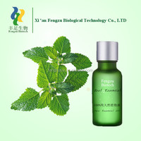 peppermint oil prices,pure nature peppermint essential oil