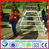 alibaba china supplier hot galvanized poultry chicken cage 25 years lifespan with auto water system