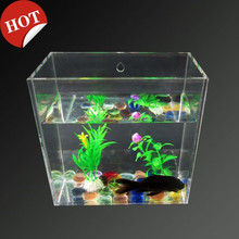 High clear square wall mounted hanging and desktop fish bowl