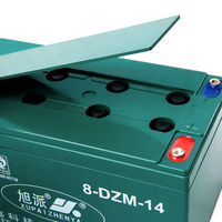 Maintenance Free battery coslight man electric bike CE ISO QS