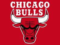 25mm 50pcs Chicago Bull Lanyards/NFL Lanyard