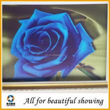 moder flower oil painting cotton canvas matte, oil painting canvas for decoration,260g oil painting canvas