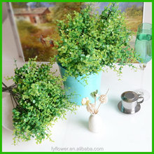 Fashion top sell hot sale artificial ficus tree