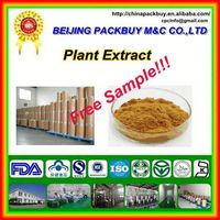 Top Quality From 10 Years experience manufacture free sample green coffee bean extract powder