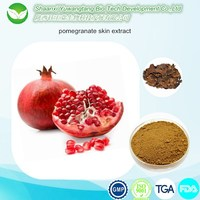 high quality pure natural pomegranate extract punicalagin