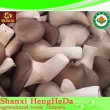 Seca suave shiitake mushroom