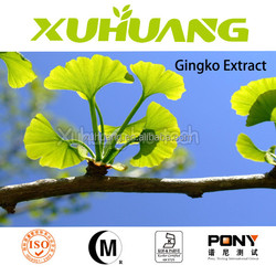 Ginkgo flavone Glycosides 24%/Terpene Lactones 6%/ginkgo biloba oil extract