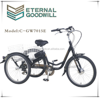 2015 3 wheels motor tricycle cargo bike 7speeds GW7015E for adults made in china