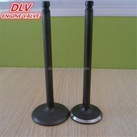 used G10 diesel engine valves