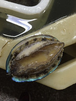health food fresh abalone live abalone frozen abalone