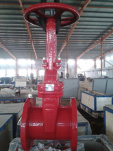 200PSI FM UL rising stem Gate Valve with Flanged End