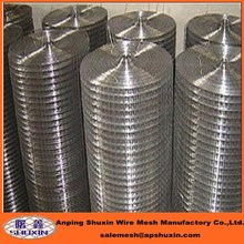 SS Welded Wire Netting