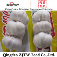 Fresh White Garlic Specification