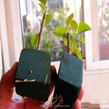 2015 HY the lastest product Potting soil