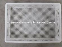 incubator hatching basket