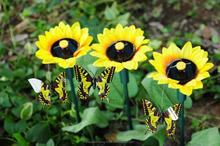 decorative dolls solar power flying toys solar swing flip flap dancing butterfly, garden decorative gift sun doll factory
