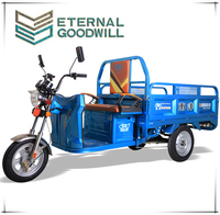 48V Voltage and Open Body Type electric tricycle/electric cargo bike