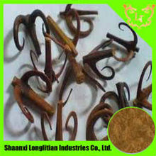 Wild and high quality uncaria extract with lowest price