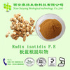 Chinese High Quality Pure Natural Radix Isatidis Extract Powder