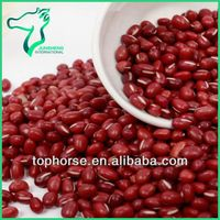 Different Specifications Small Red Beans Prices
