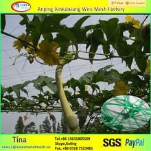 Blanco hdpe net pepino, planta soporte net, plantas red de protección