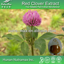 Manufacturer Supply High Quality Red Clover Extract,2.5~40% Isoflavones