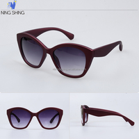 Famous Products Usa Brand Trendy Sunglasses Interchangeable Blinds