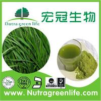 CERES EU EU Organic Barley Grass Powder green foods pure Barley grass powder,vitamineral barley powder