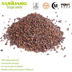 2015 New Batch Good Water Solubility Free Samples Grape Seed Extract OPC 95%,Grape Seed Extract